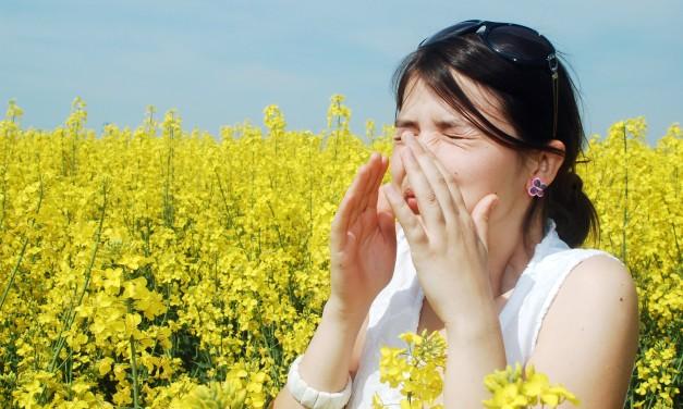 7 Ways to Keep Your Kids Away from Seasonal Allergies